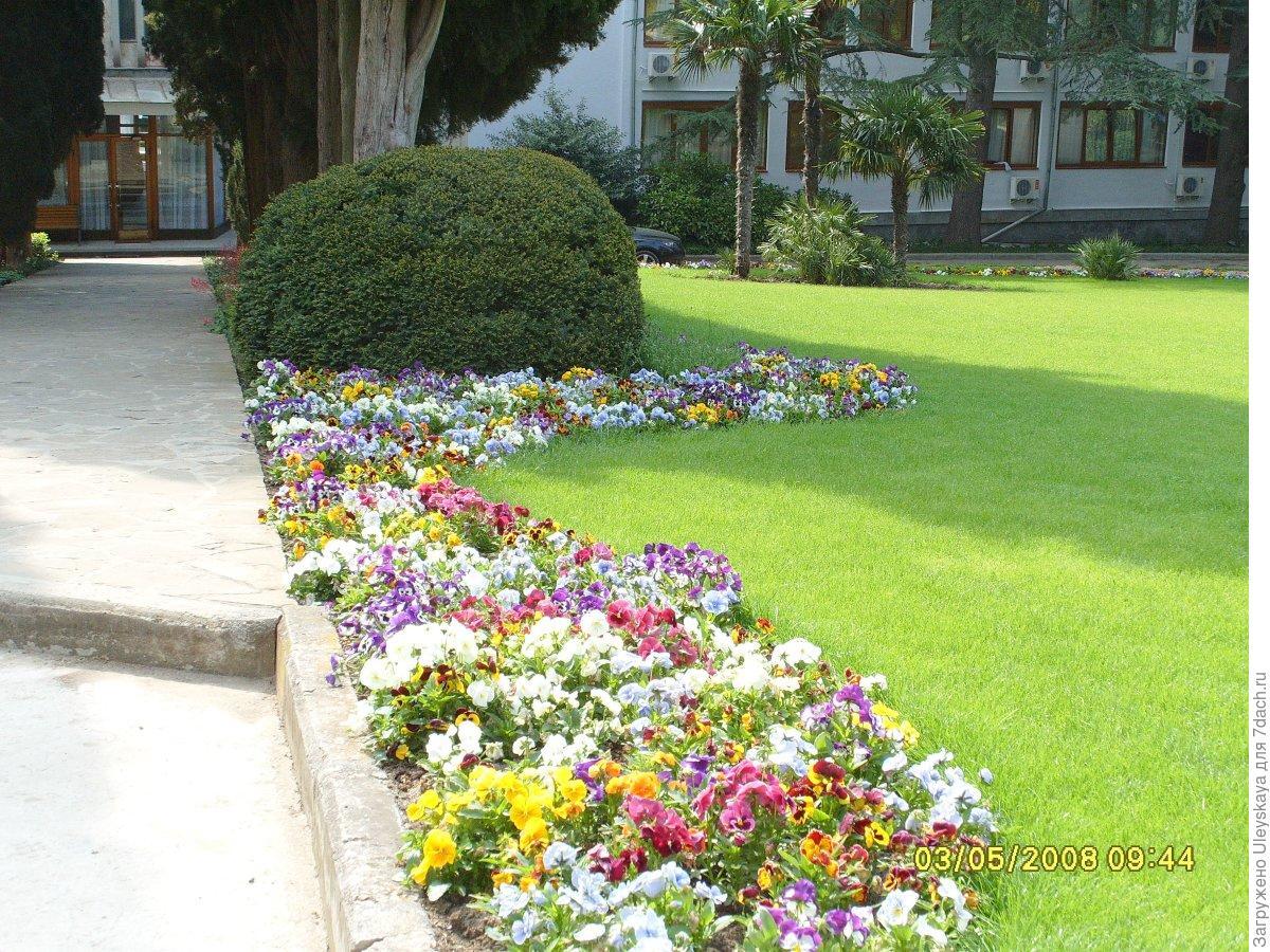 Геометрические клумбы с цветами фото