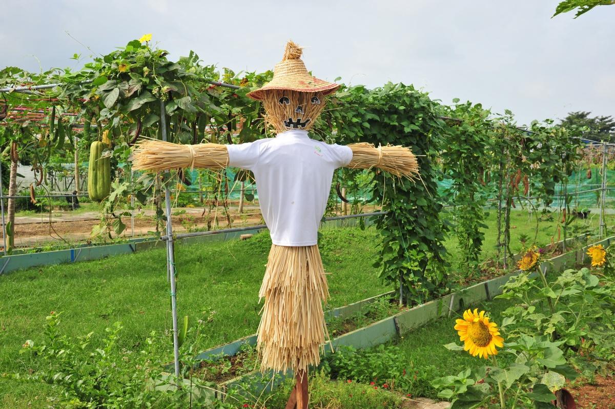 Как сделать чучело огородное с фото