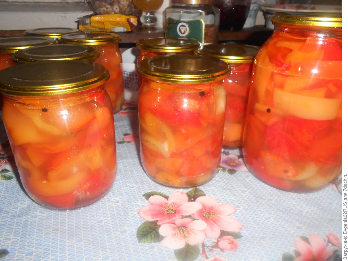 Салат шарлотка на зиму рецепт пошагово