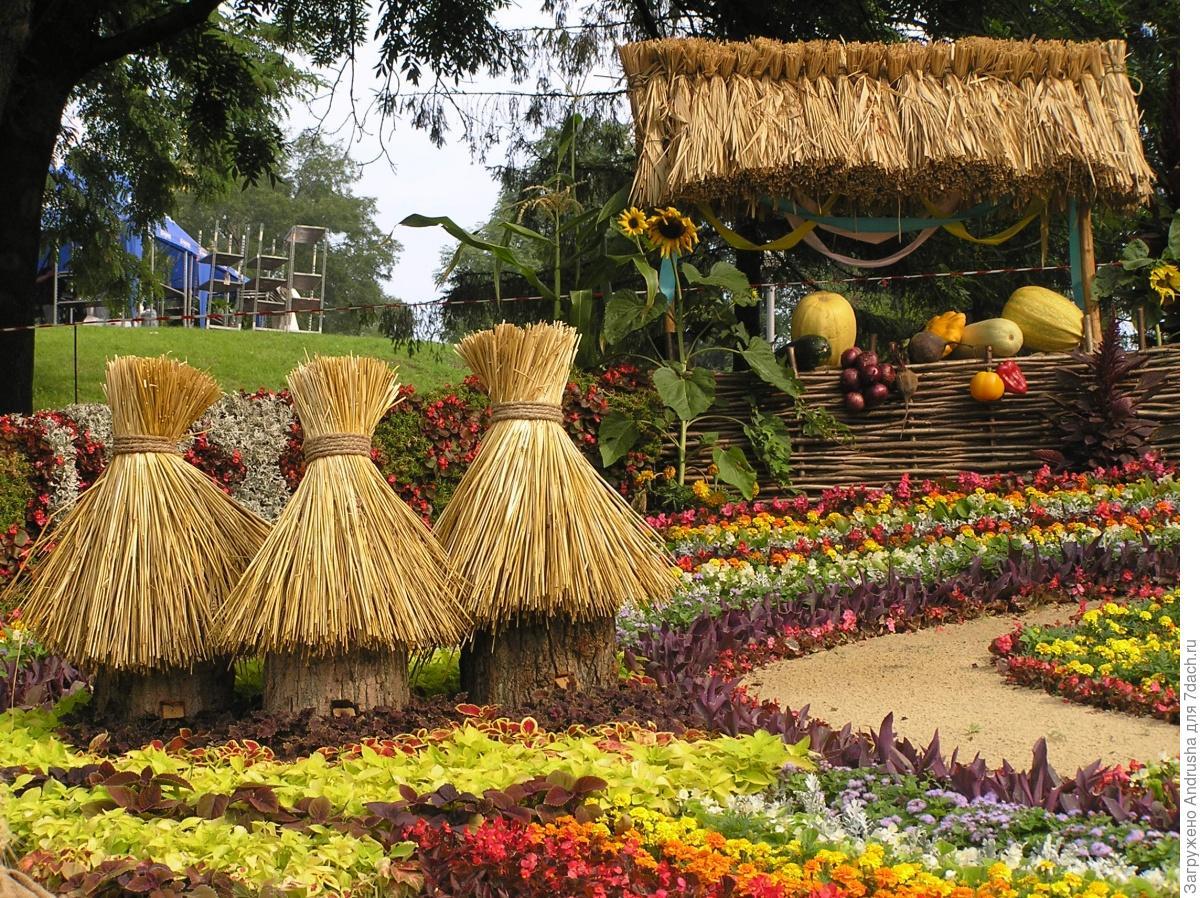 Композиции из цветов к дню города фото
