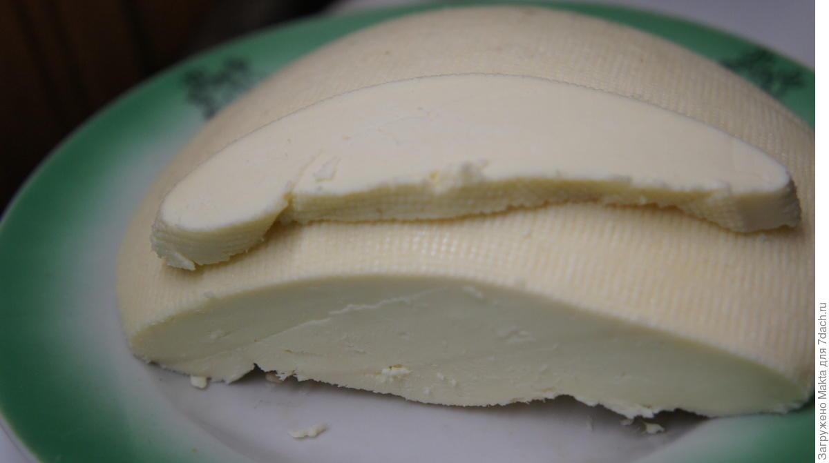 Домашний твердый сыр из козьего молока в домашних условиях 89