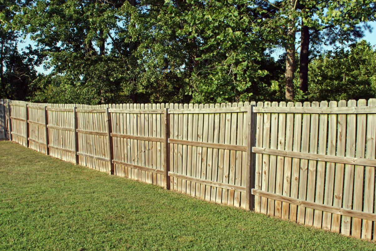 Как сделать забор на даче фото 44