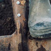 Копать или не копать? Вот в чем вопрос…
