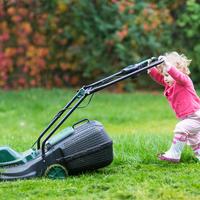 Ваша первая зеленая лужайка. Газон для начинающих - самые важные советы