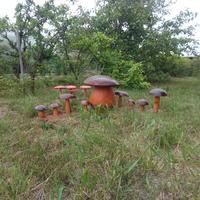 Записки старого ворчуна. Где выращивают грибы