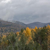 Осень золотая с сединой