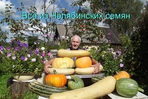 "Конкурс ""Урожай-2016"""