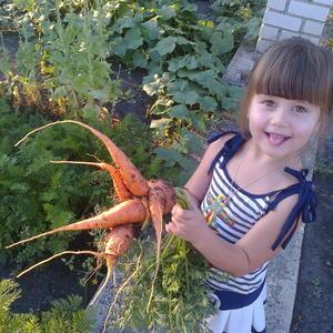 Моркошка-осьминожка