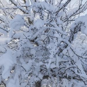 """В конкурс """"Тепло и уют"""" работы будут приниматься до 24.00 7 февраля!"""
