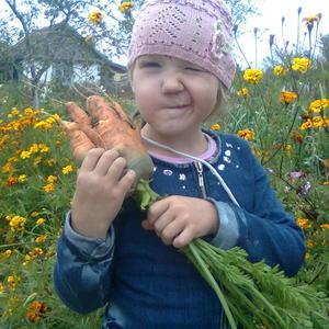Вот такая морковка!