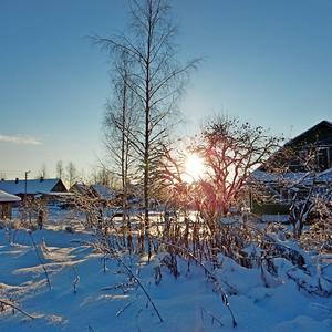 Хорошо зимой на даче