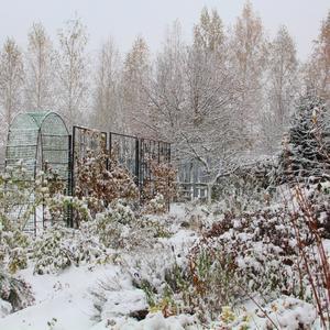 Зима пришла в октябре