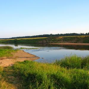 Дачная река