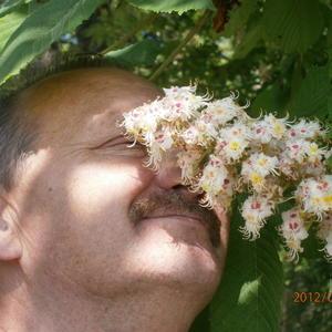 весенние ароматы