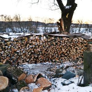 Запасы на зиму