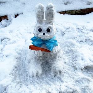 Заяц белый, куда бегал?
