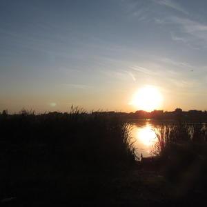 Чудесный закат на пруду неподалёку от нашей дачи