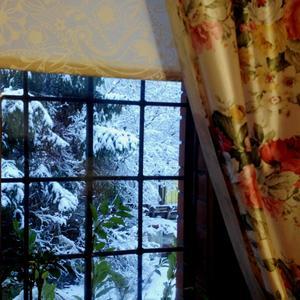 Окно в зимний сад