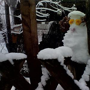 Снежный зверь