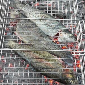 Рыбацкий ужин