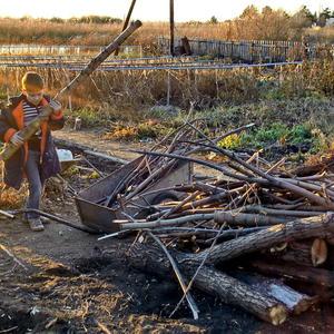 Кто ещё, если не я? Заготовка дров - дело ответственное!