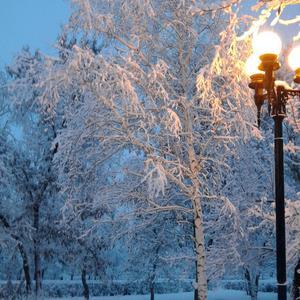 Первое зимнее утро