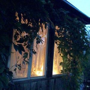 Свет родного окна