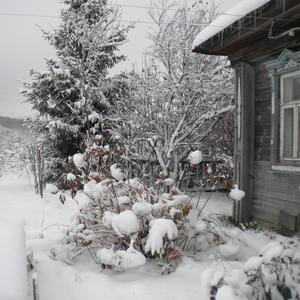 Первый снег... Неслабый такой!