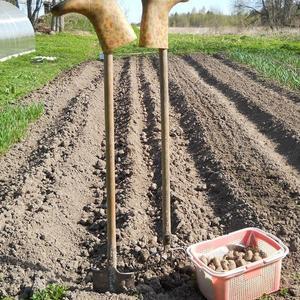 Остались от Речки только сапожки после посадки ранней картошки