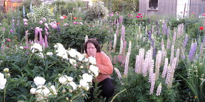 Как оформить сад-коллекцию?