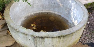 Помогите облагородить бетонное кольцо, предназначавшееся для фонтана