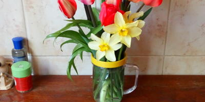 Что за цветок рядом с тюльпанами и нарциссами?
