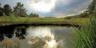 Фотографии и отзывы о коттеджном поселке «Водопад» (Дмитровский р-н МО)