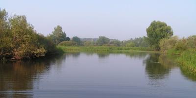 Фотографии и отзывы о коттеджном поселке «Веретея» (Истринский р-н МО)