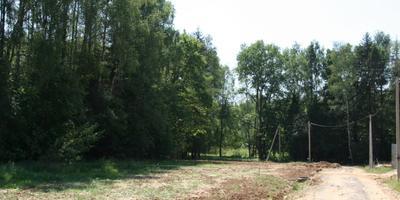 Фотографии и отзывы о коттеджном поселке «Андрейково лесное» (Дмитровский р-н МО)