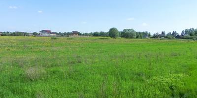 Фотографии и отзывы о коттеджном поселке «Панино» (Чеховский р-н МО)