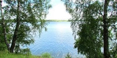 Фотографии и отзывы о коттеджном поселке «Волна» (Солнечногорский р-н МО)