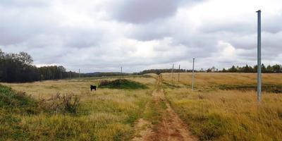 Фотографии и отзывы о коттеджном поселке «Афанасово-Хиллс» (Дмитровский р-н МО)