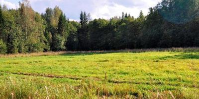 Фотографии и отзывы о коттеджном поселке «Агинтово» (Сергиево-Посадский р-н МО)
