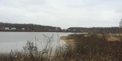 Фотографии и отзывы о коттеджном поселке «Южный причал» (Чеховский р-н МО)