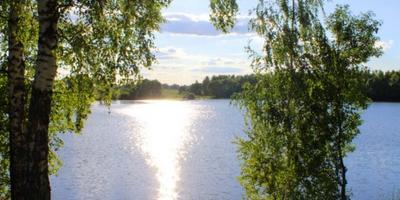 Фотографии и отзывы о коттеджном поселке «Липитино» (Озерский р-н МО)