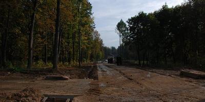 Фотографии и отзывы о коттеджном поселке «Лесные Поляны» (Одинцовский р-н МО)