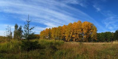 Фотографии и отзывы о коттеджном поселке «Живописные дачи» (Ступинский р-н МО)