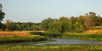 Фотографии и отзывы о коттеджном поселке «Живописный берег» (Ступинский р-н МО)