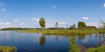 Фотографии и отзывы о коттеджном поселке «Рузские дачи» (Волокамский р-н МО)