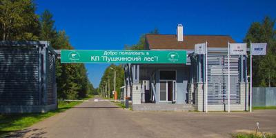 Фотографии и отзывы о коттеджном поселке «Пушкинский лес» (Пушкинский р-н МО)