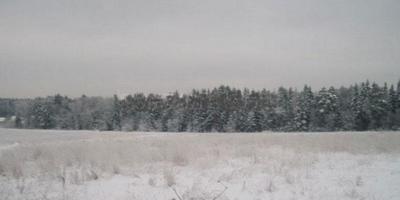 Фотографии и отзывы о коттеджном поселке «Настя» (Пушкинский р-н МО)