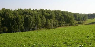 Фотографии и отзывы о коттеджном поселке «Солнечный пейзаж» (Подольский р-н МО)