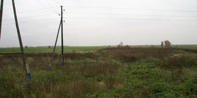 Фотографии и отзывы о коттеджном поселке «Луговой» (Раменский р-н МО)
