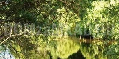 Фотографии и отзывы о коттеджном поселке «Лесное» (Наро-Фоминский р-н МО)
